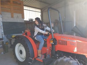 tracteur2016-5