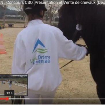 Présentation à la vente de chevaux